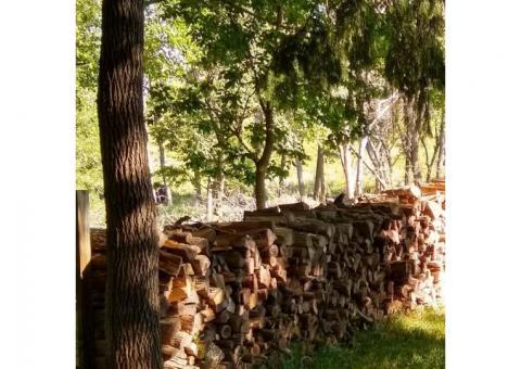Firewood $150